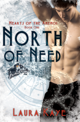 North of Need Book Cover 1