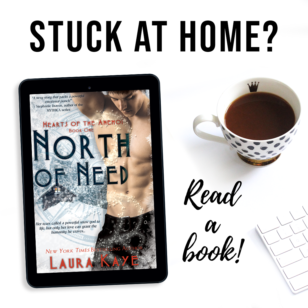 North of Need Book Cover 3